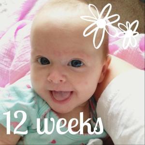 This sweet girl turned 12 weeks old this week!